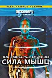 Смотреть Discovery: Тело человека. Грани возможного онлайн в HD качестве