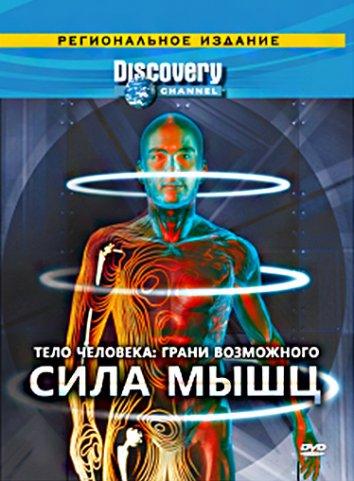 Смотреть Discovery: Тело человека. Грани возможного онлайн в HD качестве 720p