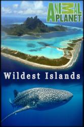 Смотреть Неизведанные острова онлайн в HD качестве
