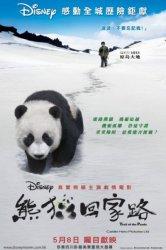 Смотреть След панды онлайн в HD качестве