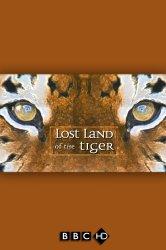 Смотреть BBC: В поисках последнего тигра онлайн в HD качестве