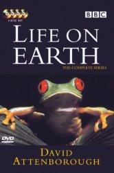 Смотреть Жизнь на Земле онлайн в HD качестве