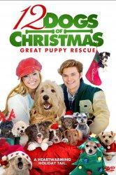 Смотреть 12 рождественских собак 2 онлайн в HD качестве