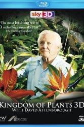 Смотреть В королевстве растений онлайн в HD качестве