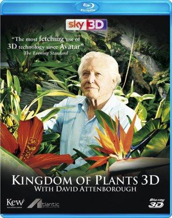 Смотреть В королевстве растений онлайн в HD качестве 720p