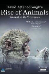 Смотреть Восстание животных: Триумф позвоночных онлайн в HD качестве