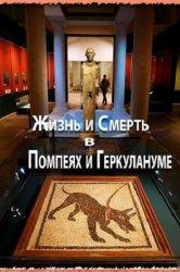 Смотреть Жизнь и смерть в Помпеях и Геркулануме онлайн в HD качестве