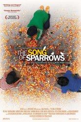 Смотреть Песня соловьев онлайн в HD качестве