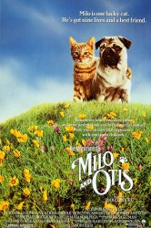 Смотреть Приключения Майло и Отиса онлайн в HD качестве