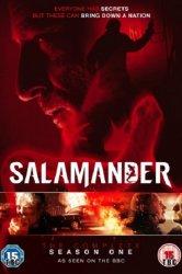 Смотреть Саламандра онлайн в HD качестве