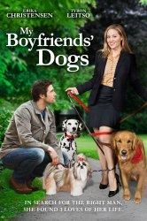 Смотреть Собаки моих бывших онлайн в HD качестве