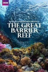 Смотреть Большой барьерный риф с Дэвидом Аттенборо онлайн в HD качестве
