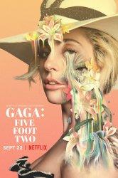 Смотреть Гага: 155 см онлайн в HD качестве 720p