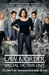 Смотреть Закон и порядок. Специальный корпус онлайн в HD качестве