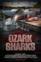 Смотреть Озаркские акулы онлайн в HD качестве
