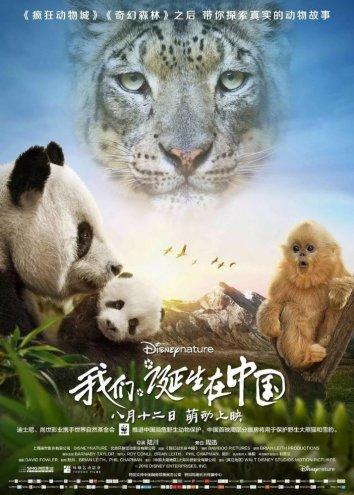 Смотреть Рождённый в Китае онлайн в HD качестве 720p