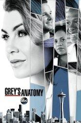 Смотреть Анатомия страсти / Анатомия Грей онлайн в HD качестве