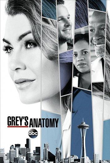 Смотреть Анатомия страсти / Анатомия Грей онлайн в HD качестве 720p