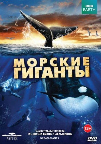 Смотреть BBC: Морские гиганты онлайн в HD качестве 720p