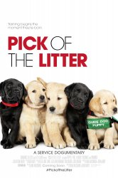 Смотреть Выбор щенка онлайн в HD качестве