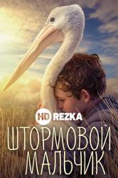 Смотреть Мой друг мистер Персиваль / Штормовой мальчик онлайн в HD качестве 720p