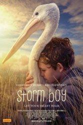 Смотреть Штормовой мальчик онлайн в HD качестве 720p