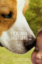 Смотреть Собачья жизнь 2 онлайн в HD качестве 720p