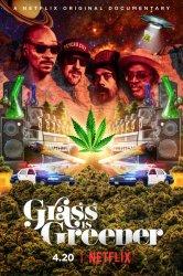 Смотреть Трава зеленее онлайн в HD качестве 720p