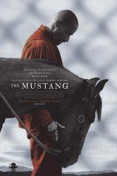 Смотреть Мустанг онлайн в HD качестве 720p