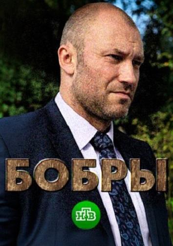 Смотреть Бобры онлайн в HD качестве 720p