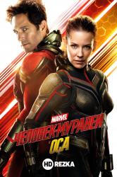 Смотреть Человек-муравей и Оса онлайн в HD качестве 720p