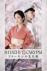 Смотреть В плену у сакуры онлайн в HD качестве 720p