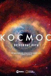 Смотреть Космос: Возможные миры онлайн в HD качестве