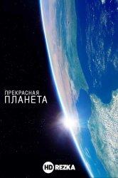 Смотреть Прекрасная планета онлайн в HD качестве