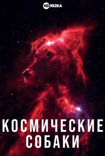 Смотреть Космические собаки онлайн в HD качестве 720p