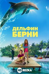 Смотреть Дельфин Берни онлайн в HD качестве
