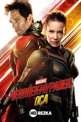 Смотреть Человек-муравей и Оса онлайн в HD качестве