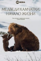 Смотреть Медведи Камчатки. Начало жизни онлайн в HD качестве 720p