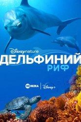 Смотреть Дельфиний риф онлайн в HD качестве 720p