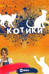Смотреть Котики онлайн в HD качестве 720p