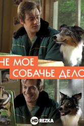 Смотреть Не моё собачье дело онлайн в HD качестве 720p