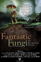 Смотреть Фантастические грибы онлайн в HD качестве 720p