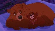 """Смотреть все части мультфильма """"братец медвежонок"""" онлайн в HD качестве"""