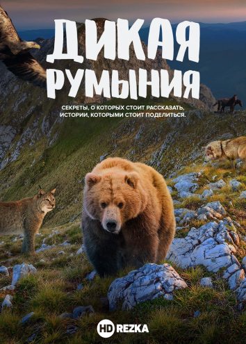 Смотреть Дикая Румыния онлайн в HD качестве 720p