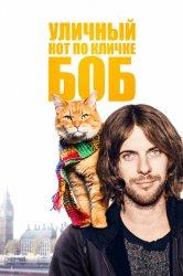 Смотреть Уличный кот по кличке Боб онлайн в HD качестве