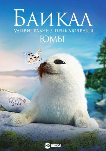 Смотреть Байкал. Удивительные приключения Юмы онлайн в HD качестве 720p