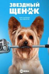 Смотреть Звездный щенок онлайн в HD качестве