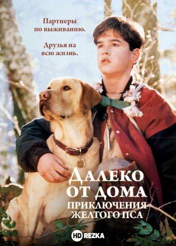 Смотреть Далеко от дома: Приключения желтого пса онлайн в HD качестве 720p