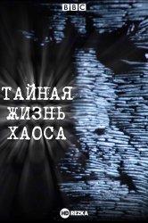 Смотреть BBC: Тайная жизнь хаоса онлайн в HD качестве 720p