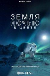 Смотреть Земля ночью в цвете онлайн в HD качестве